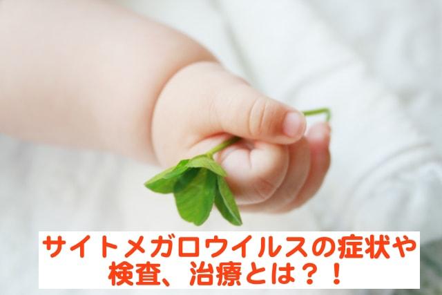 サイトメガロウイルス感染症の症状や検査とは?! 必ず行うべき3つの予防法に妊婦の方は注意!